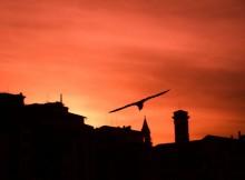 incontro-al-tramonto