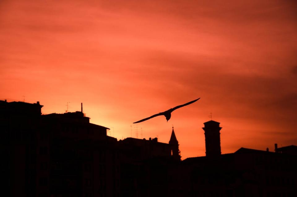 foto al tramonto in Incontro al tramonto in riva al fiume Arno a Firenze