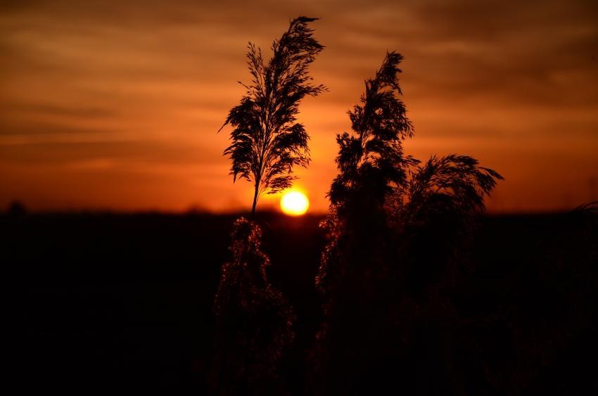 foto al tramonto in tramonto in campagna in secondo piano