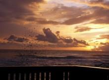 tramonto-sul-mare
