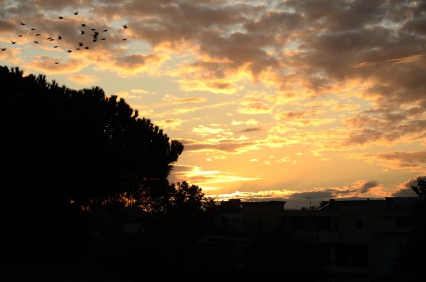 Uno stormo al tramonto tra le nuvole foto di tramonti foto al tramonto cittadino skyline